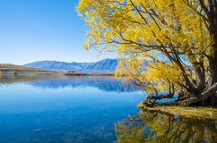 Озеро McGregor, область Кентербери, Новая Зеландия Стоковое Фото