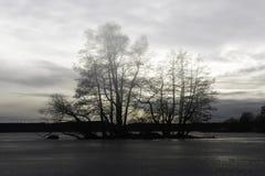Озеро Melar, который замерли в Sigtuna Стоковая Фотография RF
