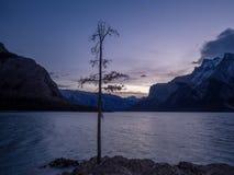 Озеро Minnewanka на восходе солнца Стоковая Фотография