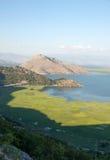 озеро montenegro skadar Сони dsc Балканов самое большое Стоковые Фотографии RF