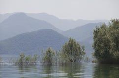 озеро montenegro skadar Сони dsc Балканов самое большое Стоковые Изображения