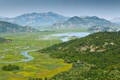 озеро montenegro skadar стоковая фотография