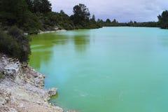 Озеро Ngakoro Стоковые Изображения RF