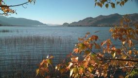 Озеро Osoyoos осени ДО РОЖДЕСТВА ХРИСТОВА, тележка сняло 4K UHD видеоматериал