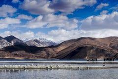 Озеро Pangong Стоковые Фотографии RF