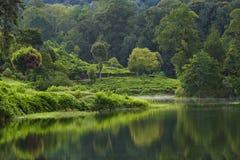 Озеро Patengan Стоковая Фотография