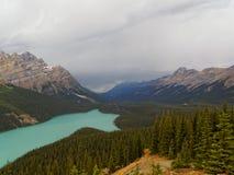 Озеро Peyto бирюзы в скалистых горах Стоковые Изображения RF