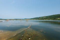 Озеро Phu Yen, Tuy Hoa, Вьетнам Стоковое Фото
