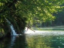 Озеро Plitvice стоковое изображение
