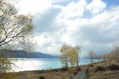 Озеро Pukaki осенью Стоковое фото RF