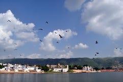 озеро pushkar стоковое изображение rf