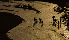 озеро qinghai Стоковое Изображение RF