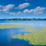 Озеро Quannapowitt в Wakefield около Бостона Стоковое Фото