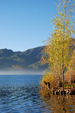 озеро s осени стоковые изображения rf