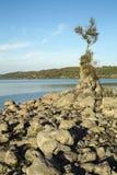 Озеро ` s Bracciano, взгляд от Anguillara Sabazia Стоковая Фотография RF