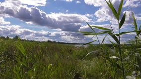 Озеро Seliger стоковые фото