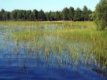 озеро siljan Швеция Стоковая Фотография RF