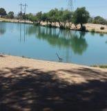 Озеро Silverbell стоковые фото