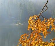 Озеро Sinevir в прикарпатских горах стоковое изображение