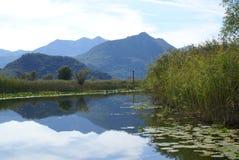озеро skadar стоковые изображения