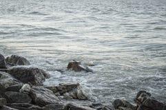 Озеро Soreline Стоковые Изображения RF