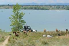 Озеро Standley Стоковое фото RF