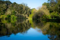 Озеро Stow в Golden Gate Park стоковые изображения rf
