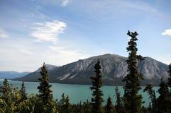 Озеро Tagish, Аляска Стоковое Изображение RF