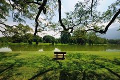 Озеро Taiping Стоковое Изображение