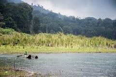 Озеро Tamblingan 2 джунгл Бали Индонезии пешее Стоковое Фото