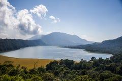 Озеро Tamblingan джунгл Бали Индонезии пешее Стоковое Изображение RF