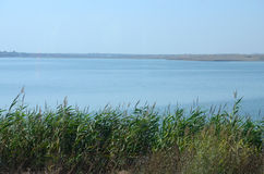 Озеро Techirghiol стоковые фотографии rf