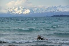 Озеро Tekapo Стоковая Фотография RF