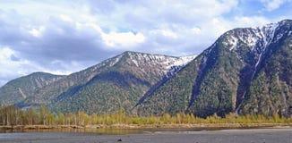 Озеро Teletskoe на Gorny Altai на пасмурный день, России Стоковая Фотография RF