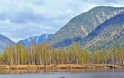 Озеро Teletskoe на Gorny Altai на пасмурный день, России Стоковое Изображение