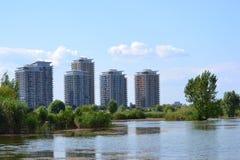 Озеро Vacaresti Стоковая Фотография RF