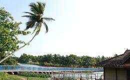 озеро veli Кералы моста Стоковые Фото