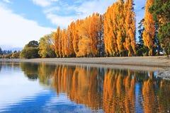 Озеро Wanaka, южный остров Новая Зеландия Стоковые Фотографии RF