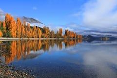 Озеро Wanaka, южный остров Новая Зеландия Стоковые Изображения RF
