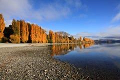 Озеро Wanaka, южный остров Новая Зеландия Стоковое Изображение RF