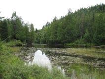 Озеро Wapizagonke Стоковое Изображение