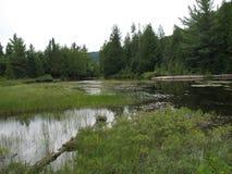 Озеро Wapizagonke Стоковые Фотографии RF
