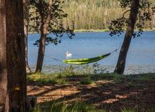 Озеро Webber в северной калифорния Стоковые Фото
