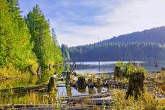 Озеро Westwood во время падения в Nanaimo, ДО РОЖДЕСТВА ХРИСТОВА, Канада стоковое изображение