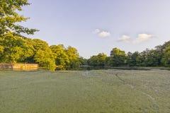 Озеро Wirral Великобритания Raby простое Стоковое Изображение RF