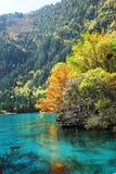 озеро wu hua осени Стоковые Фото