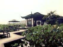 Озеро Xihu западное в фарфоре Ханчжоу Стоковые Фото