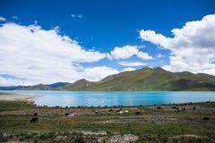 Озеро Yamdrok Стоковые Фото