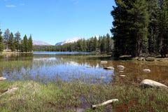 озеро yosemite Стоковая Фотография