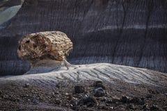 Окаменелый журнал выветриваясь из неплодородных почв на пустыне Painted национальной Стоковые Фотографии RF